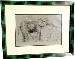 Elephant, a drawing by Charles Johnson