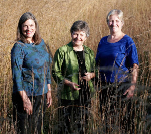 photo of Voices of a Different Dream: Ellen Mason, Annie Geheb & Susan Windle